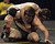 De La Salle's Aaron Pease, bottom, wrestles Gilroy's Mark Penyacsek in a 170-pound second round match during the California Interscholastic Federation wrestling championships in Bakersfield, Calif., on Friday, March 1, 2013. Pease would go on to win. (Anda Chu/Staff)