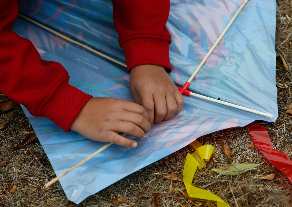 . Jose Soto, 10, puts kite together at Oyster Point Marina and Park . (John Green/Bay Area News Group)
