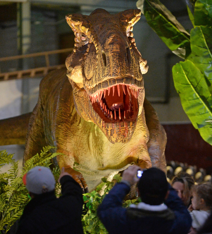 """. People look at an animatronic Tyrannosaurus Rex on display at the Jurassic Quest event held this weekend at the Alameda County Fairgrounds in Pleasanton, Calif., on Saturday, Feb. 8, 2014. The indoor exhibit features  life-size, realistic animatronic dinosaurs from the Jurassic, Triassic and Cretaceous periods. Visitors can interact with the dinosaurs and learn about them and even ride a few. There will be a T-Rex and Triceratops fossil digs where young paleontologists can uncover long hidden dinosaurs bones. Their is also a \""""Dino Bounce\"""" children\'s play area with several, towering, dinosaur theme inflatable mazes. (Doug Duran/Bay Area News Group)"""