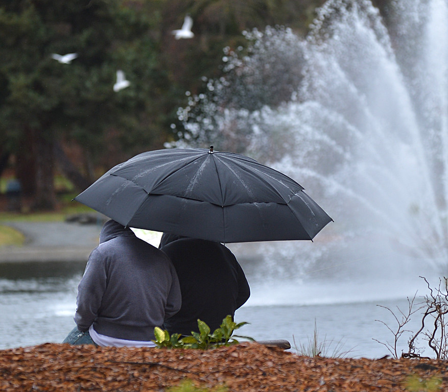 . A couple huddle under their umbrella in the rain as they look out at the pond at Heather Farm Park in Walnut Creek, Calif., on Saturday, Feb. 7, 2014. (Dan Rosenstrauch/Bay Area News Group)