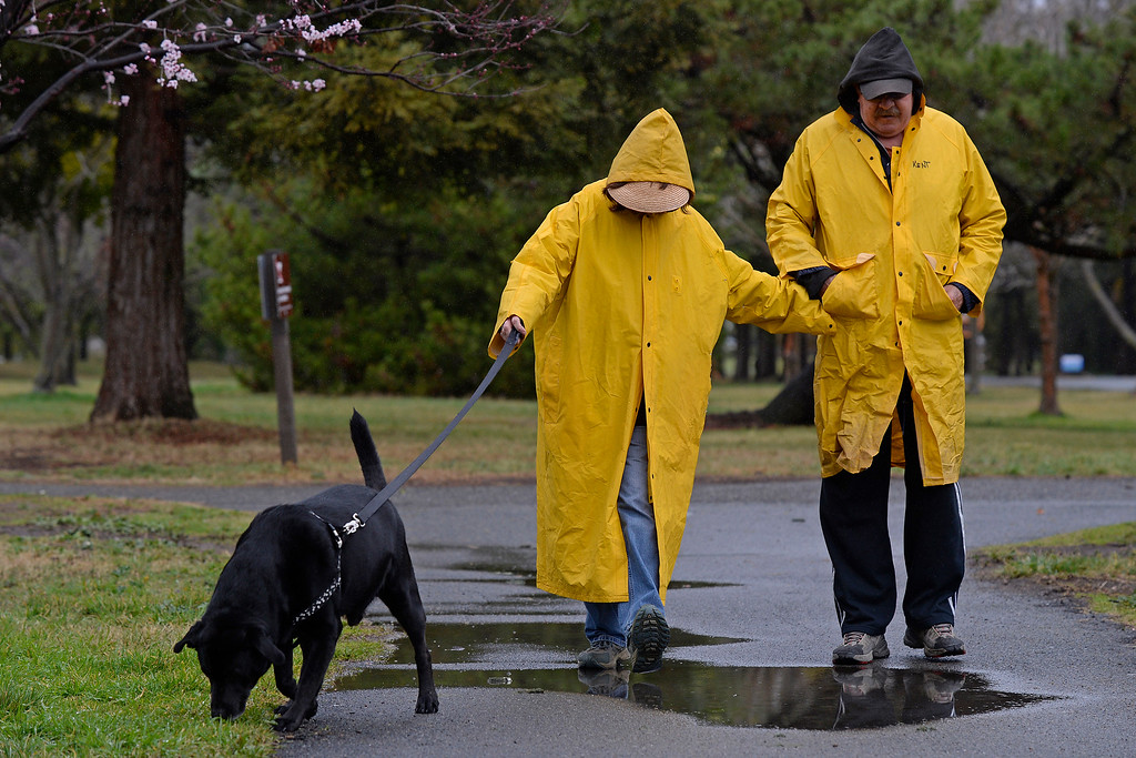 . Kent Jones, of Martinez, and his wife Francie Jones step in a water puddle with their dog Mandog while enjoying a walk in the rain at the Martinez Regional Shoreline in Martinez, Calif., on Saturday, Feb. 8, 2014. (Jose Carlos Fajardo/Bay Area News Group)