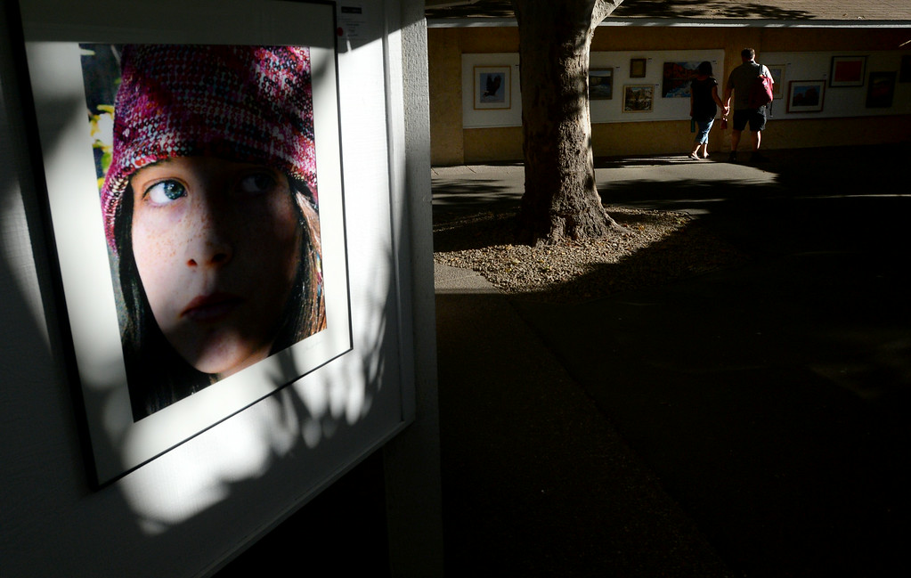 """. A shadow is cast across a photo titled \""""Flapper\"""" by photographer Theresa Jessie, as fairgoers walk through the Adult Fine Art exhibit at the Alameda County Fair in Pleasanton, Calif., on Saturday, July 5, 2014. (Doug Duran/Bay Area News Group)"""