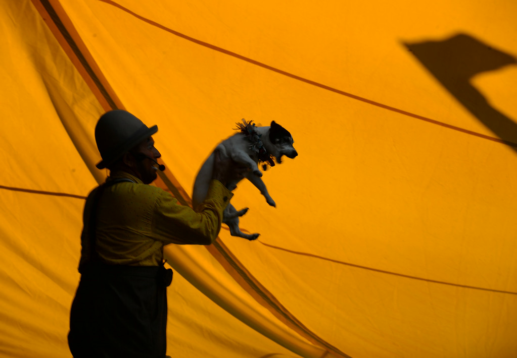 """. Todd Victor of Santa Rosa, owner of the \""""Just in Time Circus Family Fun Stage\"""" holds his dog during a show at the Alameda County Fair in Pleasanton, Calif., on Wednesday, July 2, 2014. (Doug Duran/Bay Area News Group)"""