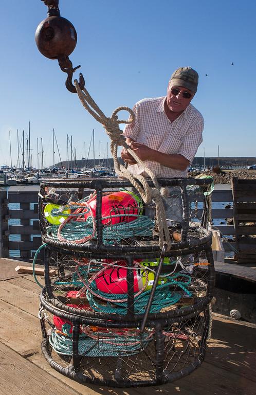 ". Fisherman Dutch Freeman loads crab pots onto the \""Cricket\"" at Pillar Point Harbor. (John Green/Bay Area News Group)"