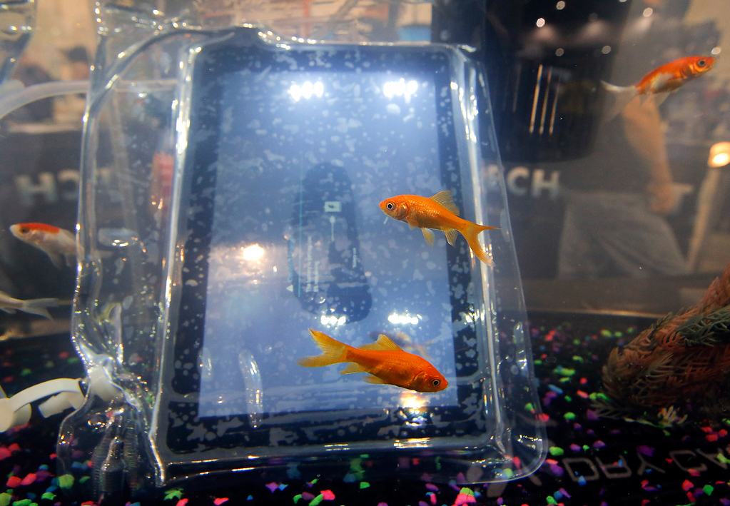 . Goldfishes swim around a tablet displayed in a waterproof case at the DryCase booth at the International Consumer Electronics Show in Las Vegas, Wednesday, Jan. 9, 2013. (AP Photo/Jae C. Hong)
