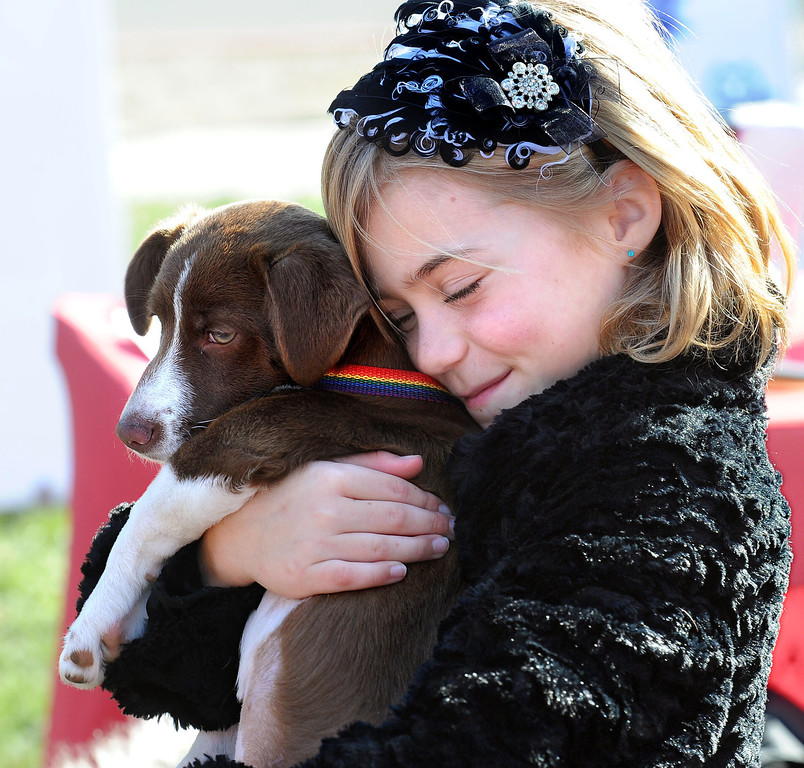 . Olivia Prevost, 8, of Pleasanton, holds her new puppy after her family adopted the border collie-corgi mix during the Tri-Valley Animal Rescue\'s dog adoptions held during the Pleasanton Farmers Market in Pleasanton, Calif., on Saturday, Jan. 19, 2013. The Tri-Valley Animal Rescue\'s dog adoption area is located at the corner of First Street and Angela Avenue and is held every Saturday from 10 a.m. to 12:30 p.m. (Doug Duran/Staff)