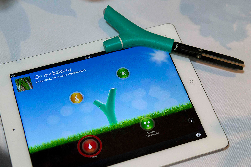 . A Parrot Flower Power wireless device is displayed on top of an iPad at the opening press event of the Consumer Electronics Show (CES) in Las Vegas January 6, 2013. The device monitors conditions of your plants and sends a visual alert if a plant needs attention. The device is expected to be available by the end of 2013 but a price has not been set. (REUTERS/Steve Marcus)
