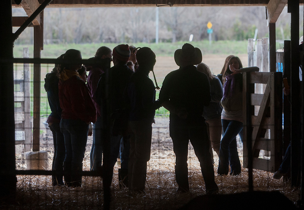 . Participants in the EcoFarm Conference tour the Harley Farms goat stables.