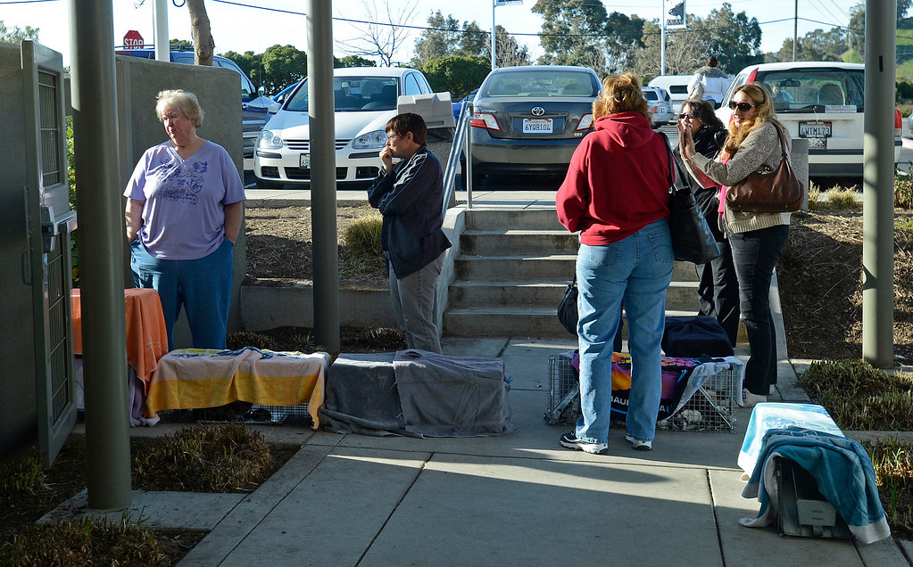 . Volunteers stand by traps containing feral cats as they drop them off during the 2013 SNIP (Spay Neuter Impact Program) Spay Day at the Contra Costa Animal Services Department in Martinez, Calif., on Sunday, Feb. 10, 2013. Karen Kops, executive director of Homeless Animals Response Program, launched this program in 2007 in an effort to reduce the number of ownerless cats roaming and breeding in East Contra Costa County. Kops estimated that about 100 cats that were trapped by volunteers are being spayed or neutered today. Other SNIP clinic dates are April 14, June 23, August 25 and November 3. (Jose Carlos Fajardo/Staff)