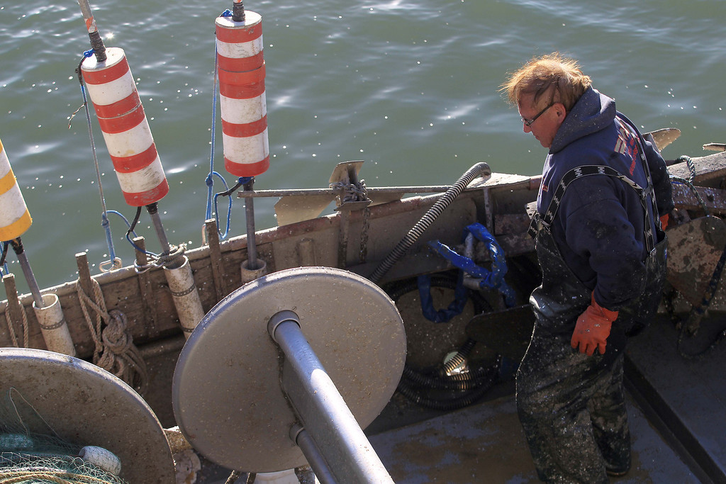 . Fisherman Dennis Deaver, of Alamo, unloads his 18-ton herring catch at the  San Francisco Community Fishing Association dock on Pier 45 in San Francisco, Calif., on Friday, Feb. 8, 2013.  (Jane Tyska/Staff)
