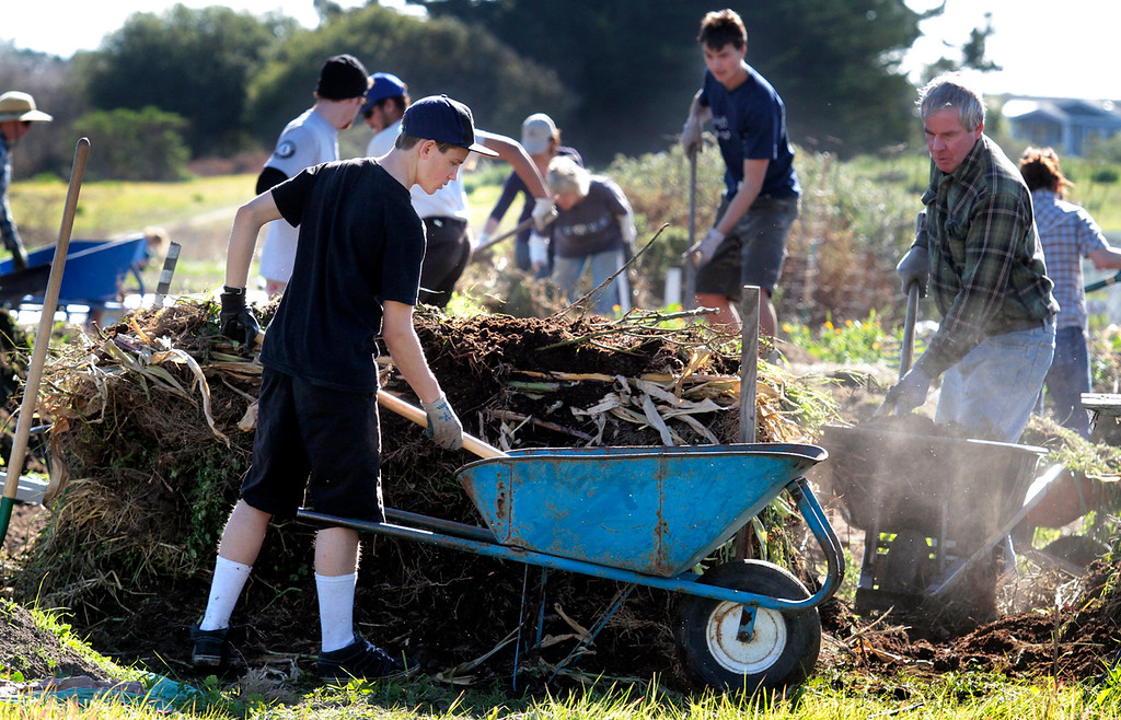 . An army of volunteers turns the compost pile at the Homeless Garden Project during National Day of Service on Monday, Jan. 21, 2013, in Santa Cruz, Calif. (Shmuel Thaler/Sentinel)