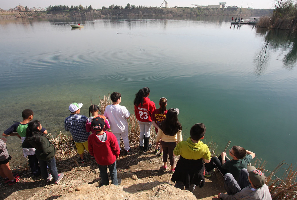 . Students from John Green Elementary School in Dublin look at just released trout at Shadow Cliffs Lake in Pleasanton, Calif., on Thursday, March 14, 2013. They participated in the Trout in the Classroom program sponsored by the State Department of Fish and Wildlife. Classes are given 35 trout eggs and tanks. When the hatchlings are large enough they are released into local lakes. (Jim Stevens/Staff)