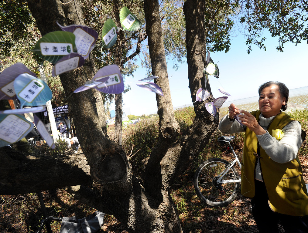 . Len Hua puts well wished and a wishing tree during a prayer ceremony for the Asiana Flight victims put on by the Tzu Chi Foundation in Burlingame, Calif., on Saturday, July 13, 2013. Tzu Chi is an international Buddhist relief organization that began in Taiwan and offers compassionate efforts for charity, medical treatment, education and disaster relief.  (Dan Honda/Bay Area News Group)