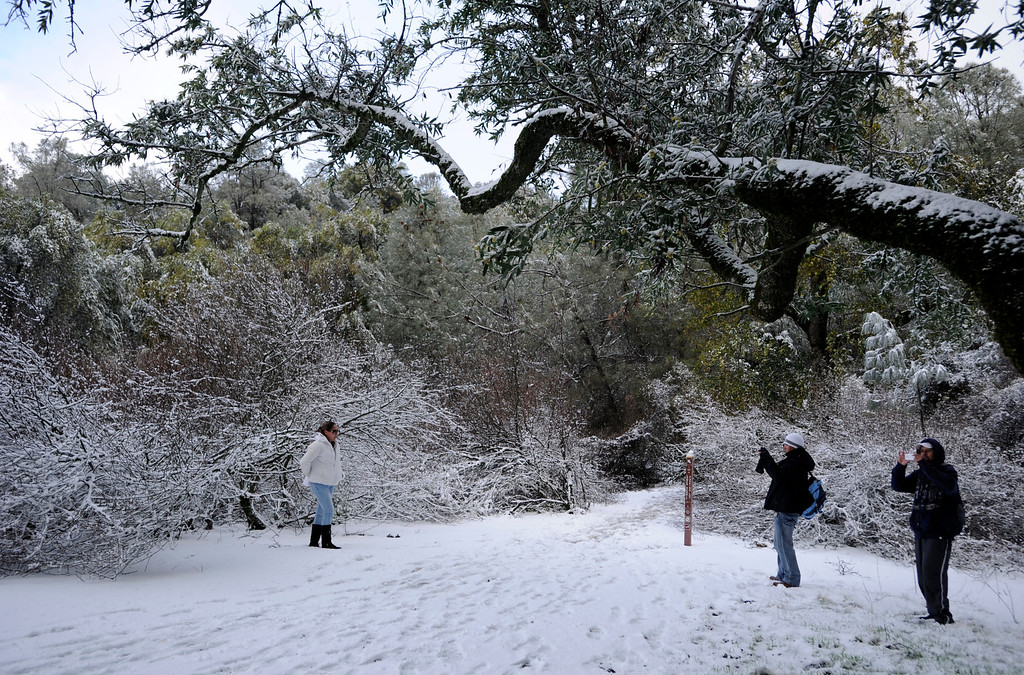 . Visiting from Jalisco, Mexico, Maria Maldando, left, Gabriel Franko, center, and Arturo Canal take turns taking each others\' photograph in the snow at Mount Diablo State Park in Walnut Creek, Calif., on Tuesday, Feb. 19, 2013.   (Susan Tripp Pollard/Staff)