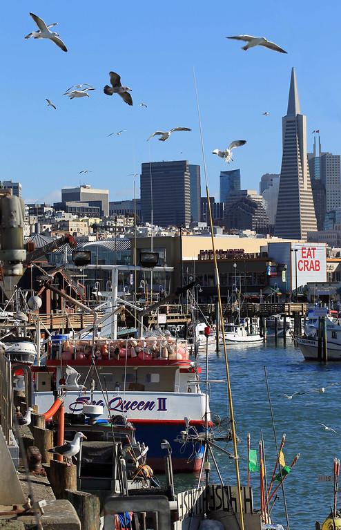 . View of the Transamerica Pyramid from the San Francisco Community Fishing Association dock on Pier 45 in San Francisco, Calif., on Friday, Feb. 8, 2013.  (Jane Tyska/Staff)