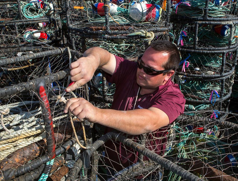 . Fisherman Ryan Kisling, 27, gets crab pots ready at Pillar Point Harbor.(John Green/Bay Area News Group)