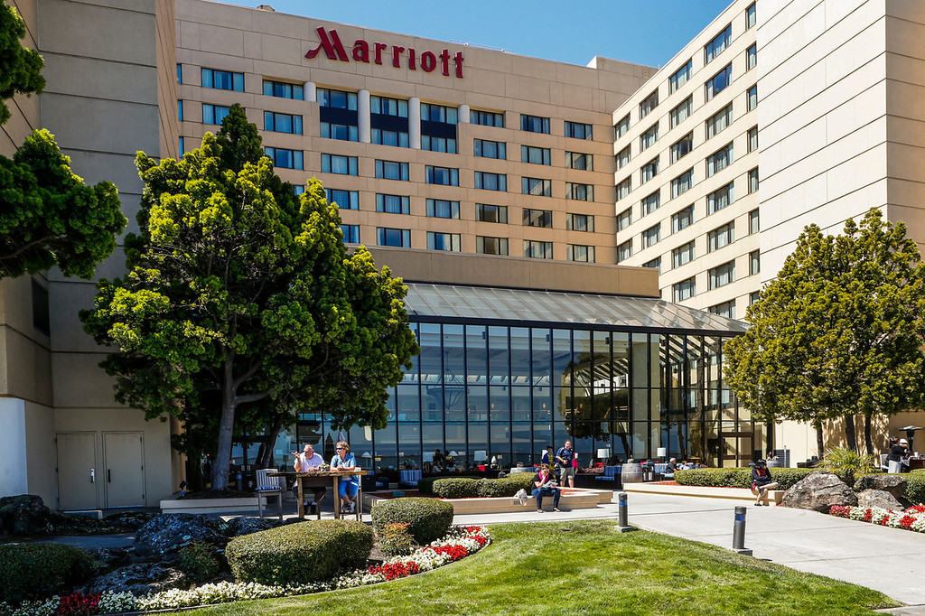 . Barn owls have made a nest outside two rooms on the 11th floor of the San Francisco Airport Marriott Waterfront hotel in Burlingame, Calif., onFriday,  Aug. 2, 2013. (John Green/Bay Area News Group)